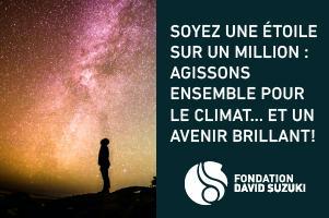 DAVIES-BANNIÈRE-CARRÉ